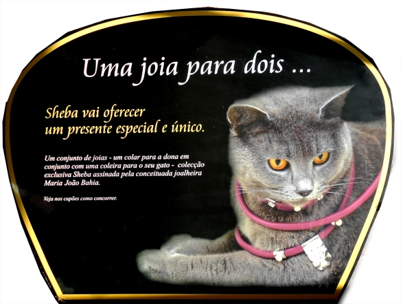Sheba anuncio placard, Sheba Advert with a Femal Chartreux from Reino D´Ágatha